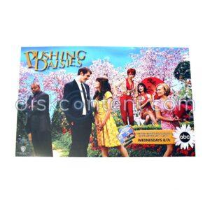 Pushing Daisies Promo Mini Poster